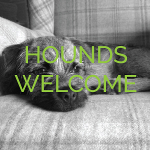 Hounds Welcome